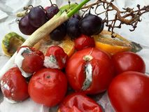 Tipos diferentes de frutas e legumes podres Imagens de Stock Royalty Free