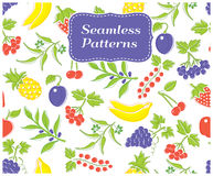 Tipos diferentes de frutos e de bagas deliciosos ilustração stock