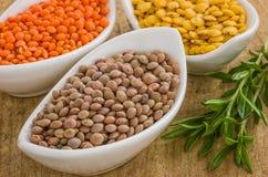 Tipos diferentes de lentilhas fotografia de stock royalty free