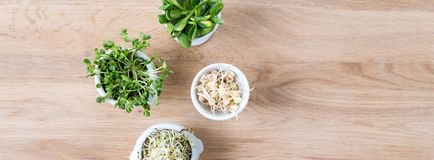 Tipos diferentes de micro verdes nas bacias brancas para molhos no fundo de madeira Produto fresco do jardim crescido organicamen Fotos de Stock