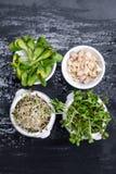 Tipos diferentes de micro verdes nas bacias brancas para molhos no fundo molhado da ardósia Produto fresco do jardim organicament Fotos de Stock Royalty Free