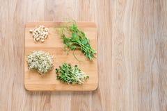 Tipos diferentes de micro verdes no fundo de madeira Conceito saudável comer do produto fresco do jardim crescido organicamente Imagem de Stock Royalty Free