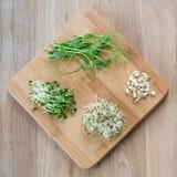 Tipos diferentes de micro verdes no fundo de madeira Conceito saudável comer do produto fresco do jardim crescido organicamente Foto de Stock Royalty Free