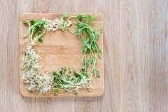 Tipos diferentes de micro verdes no fundo de madeira Produto fresco do jardim crescido organicamente, símbolo da saúde e Imagem de Stock