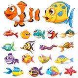 Tipos diferentes de peixes ilustração royalty free