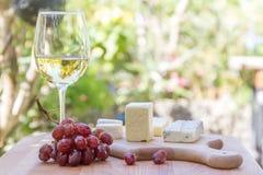 Tipos diferentes de queijo com vinho e uvas Fotos de Stock