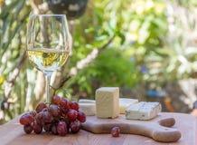 Tipos diferentes de queijo com vinho e uvas Fotografia de Stock