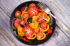 Tipos diferentes de salada dos tomates, da salsa, do aneto e da cebola vermelha Fotos de Stock