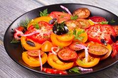 Tipos diferentes de salada dos tomates, da salsa, do aneto e da cebola vermelha Foto de Stock