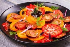 Tipos diferentes de salada dos tomates, da salsa, do aneto e da cebola vermelha Imagem de Stock
