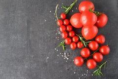 Tipos diferentes de tomates em ramos com alecrins e sal do mar em um fundo abstrato cinzento escuro Espaço para o texto Fotos de Stock