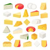 Tipos diferentes do vetor de ícones detalhados do queijo ilustração royalty free