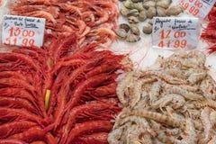 Tipos diferentes dos camarões e dos mexilhões para a venda fotografia de stock