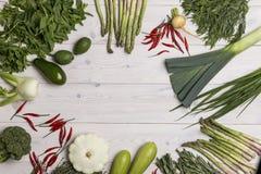 Tipos diferentes dos vegetais que formam um círculo Imagens de Stock