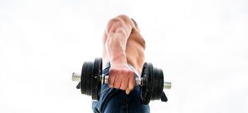 Tipos usos e riscos dos esteroides anabólicos Homem muscular que exercita com dumbbell Desportista com parte traseira e os bra?os fotos de stock royalty free