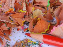 Tipp des roten Bleistifts mit Ausschussbleistiftspitzer in der Schule Stockfotografie