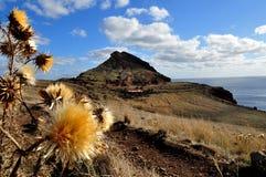Am Tipp von Madeira-Insel lizenzfreies stockbild