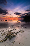 Tips of borneo sunset with stone vertical view. This shoot taken during sunset at tips of borneo near south china sea royalty free stock photo