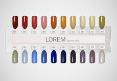 Tips. Set of false nails for manicure. Varnish color palette for nail extension. Artificial nails on transparent basis. Stock Photo