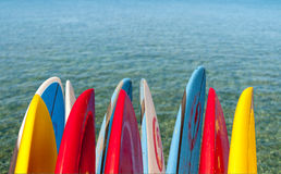 Surfboards by calm ocean. Tips of surf board or surfboards by side of calm blue transparent clear sea Royalty Free Stock Photos