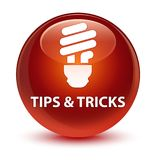 Tips and tricks (bulb icon) glassy brown round button Royalty Free Stock Photography