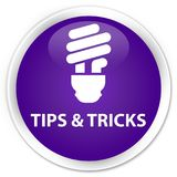 Tips and tricks (bulb icon) premium purple round button Royalty Free Stock Photography
