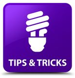 Tips and tricks (bulb icon) purple square button Stock Photography