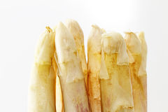 Tips of white asparagus Stock Images