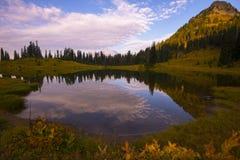Tipsoo jezioro w ranku zdjęcia royalty free