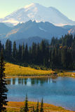 Tipsoo Lake at Mt. Rainier. Tipsoo Lake in Summer with Mount Rainier in the background Royalty Free Stock Image