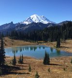 Tipsoo Lake & Mt. Rainier Stock Photo