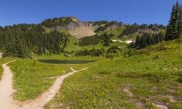 Tipsoo Lake in Mt Rainier NP Stock Image