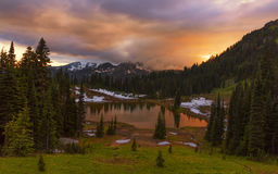 Tipsoo Lake at Sunset in Mt Rainier NP Royalty Free Stock Photo
