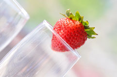 Tipsy Strawberry. Strawberry on a champagne flute Stock Photo
