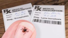 Tiquetaque do rícino e prescrição médica com código de barras Ricinus do Ixodes imagem de stock royalty free