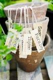 Étiquette d'herbe Image libre de droits