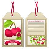 Étiquette de vente des cerisiers de jeunes plantes Instructions pour planter l'arbre Photo libre de droits