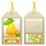 Étiquette de vente des poiriers de jeunes plantes Instructions pour planter l'arbre Image stock