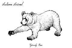 Tiré par la main d'Autumn Grizzly Bear sur le fond blanc illustration stock