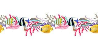 Tiré par la main dans l'élément naturel du monde de mer d'aquarelle Panneau seemless de récif coralien sur le fond blanc illustration stock
