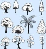 Tiré par la main réglé d'arbre blanc Image stock