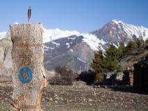 Tir à l'arc en bois de cible pour la pratique en matière de chasseur Images libres de droits
