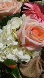 Tir étroit des fleurs image libre de droits