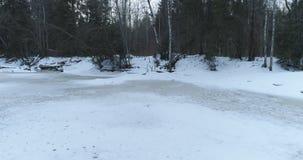 Tir aérien au-dessus de rivière congelée dans la forêt de sapin en hiver Photo libre de droits