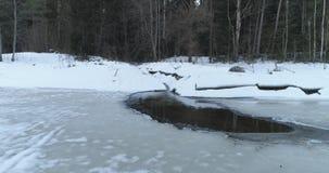 Tir aérien au-dessus de rivière congelée dans la forêt de sapin en hiver Photos stock