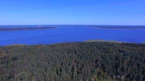 Tir aérien d'inclinaison de Forest On Island On Lake Seliger, Russie banque de vidéos