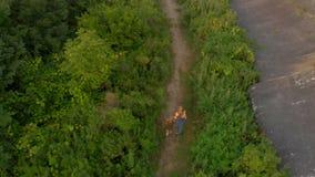 Tir aérien d'une jeune femme et de son petit fils courant au territoire d'une vieille 1ère forteresse de guerre mondiale pendant  banque de vidéos