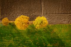 Tir aérien des arbres dans la bordure de haies, feuillage vibrant d'automne images stock