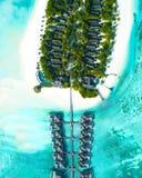 Tir aérien des maisons construites au-dessus de la mer et sur la terre avec des arbres dans les îles des Maldives images libres de droits