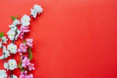 Tir année chinoise de décoration de disposition de nouvelle et de concept lunaire de fond de vacances de nouvelle année photographie stock